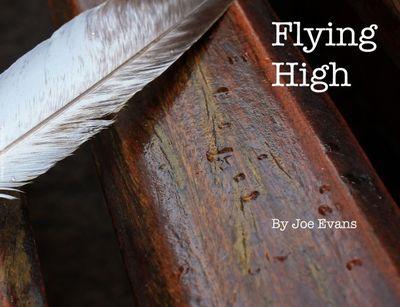 Flying High | Bob Books