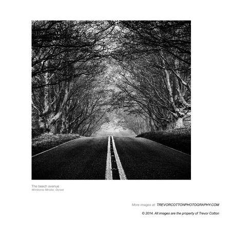 50 shades deeper book 4 pdf