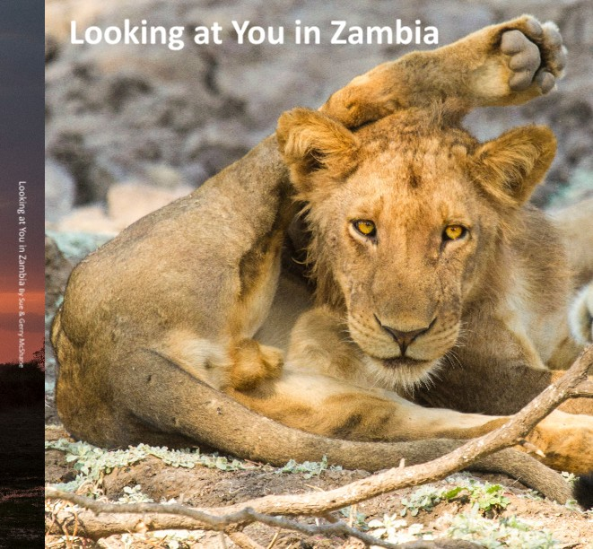 Looking at you in Zambia