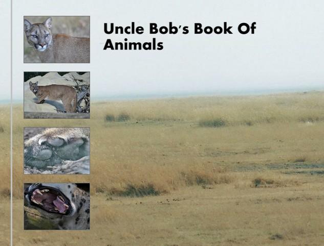 Uncle Bob 39 S Book Of Animals Bob Books